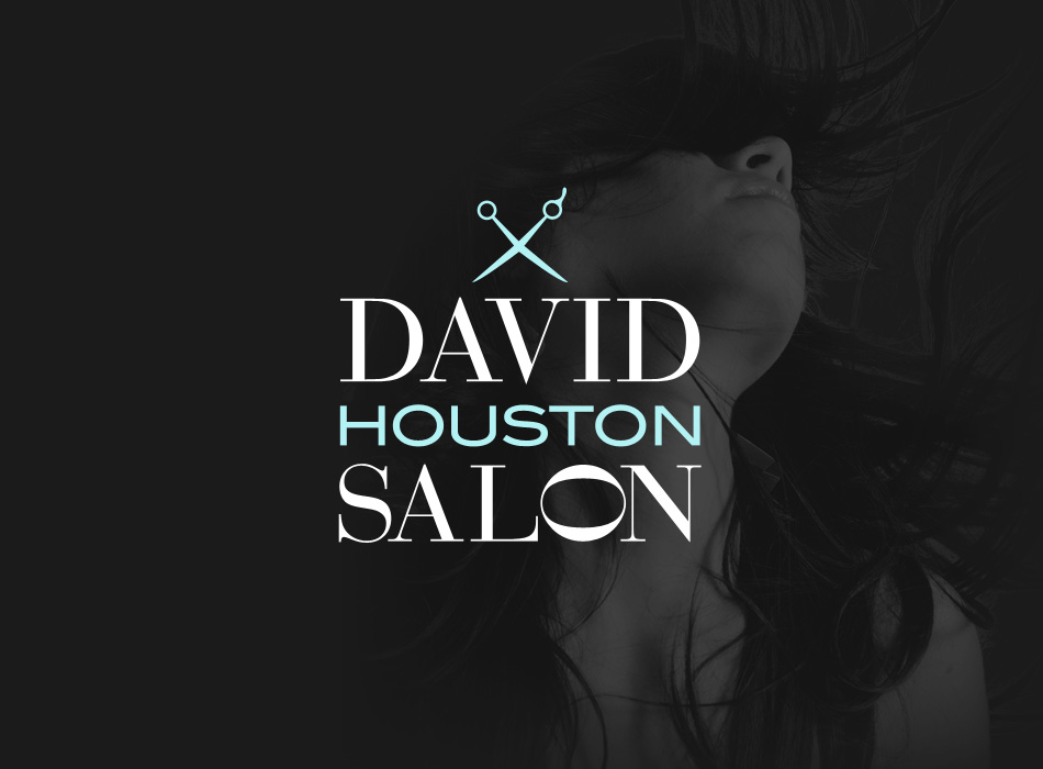 David Salon Logo
